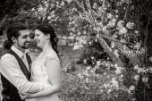 Miranda and Luke surrounded by blossoms on their wedding day